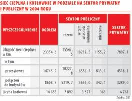 Sieç cieplna w podziale na sektor prywatny i publiczny w 2004 r.