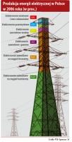 Produkcja energii elektrycznej w Polsce w 2006 r. (w proc.)