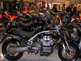 Szalone stado Moto Guzzi.