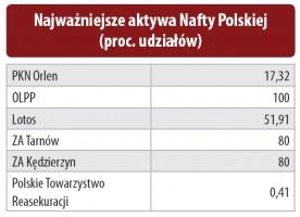 Najważniejsze aktywa Nafty Polskiej (proc. udziałów)