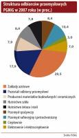 Struktura odbiorców przemysłowych PGNiG w 2007 roku (w proc.)
