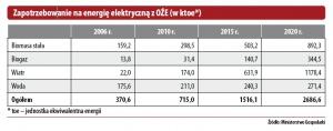 Zapotrzebowanie na energię elektryczną z OZE