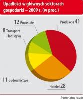 Upadłości w głównych sektorach gospodarki - 2009 r.