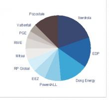 Wykres 2 - Udział poszczególnych firm w mocy zainstalowanej w operacyjnych farmach wiatrowych o mocy powyżej 5MW w Polsce<br> Źródło: Analiza PricewaterhouseCoopers na podstawie danych spółek
