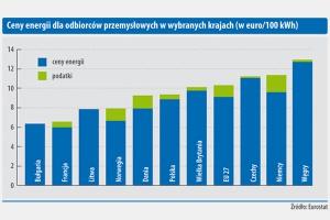 Ceny energii dla odbiorców przemysłowych w wybranych krajach (w euro/100 kWh)