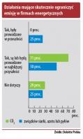 Działania mające skutecznie ograniczyć emisję w firmach energetycznych