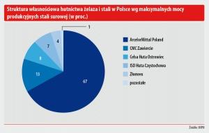 Struktura własnosciowa hutnictwa zelaza i stali w Polsce wg maksymalnych mocy produkcyjnych stali surowej (w proc.)
