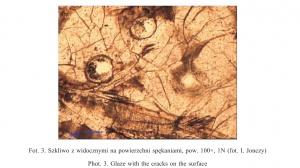 Fot. 3. Szkliwo z widocznymi na powierzchni spękaniami, pow. 100×, 1N (fot. I. Jonczy)