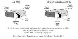 Rys. 1. Struktura zużycia paliw podstawowych w elektroenergetyce zawodowej w 2009 r oraz w okresie styczeń–październik 2010 r.