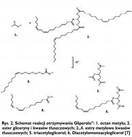 Rys. 2. Schemat reakcji otrzymywania Gliperolu: 1. octan metylu; 2. ester gliceryny i kwasów tłuszczowych; 3.,4. estry metylowe kwasów tłuszczowych; 5. triacetyloglicerol; 6. Diacetylomonoacyloglicerol [7]
