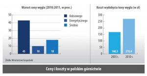 Ceny i koszty w polskim górnictwie