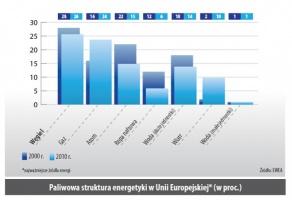 Paliwowa struktura energetyki w Unii Europejskiej (w proc.)