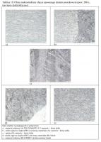 Tablica 10. Obraz mikrostruktury złącza spawanego drutem proszkowym (pow. 200 x, trawienie elektrolityczne)