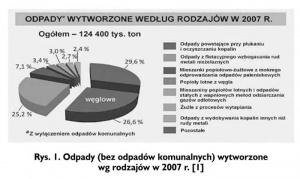 Rys. 1. Odpady (bez odpadów komunalnych) wytworzone wg rodzajów w 2007 r. [1]