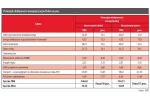 Potencjał efektywności energetycznej w Polsce w proc.