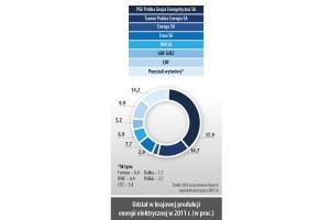 Udział w krajowej produkcji energii elektrycznej w 2011 r. (w proc.)