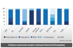 Struktura wytwarzania energii w wybranych rmach Unii Europejskiej