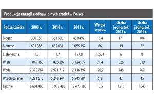 Produkcja energii z odnawialnych źródeł w Polsce