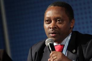 Zdjęcie numer 3 - galeria: EEC 2013: Forum Współpracy Gospodarczej Afryka-Europa Centralna Polityka rozwojowa UE wobec Afryki
