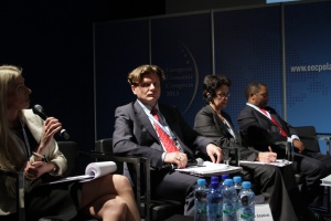 Zdjęcie numer 1 - galeria: EEC 2013: Forum Współpracy Gospodarczej Afryka-Europa Centralna, Prezentacje