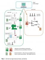 Rys. 1. Schemat organizacji procesu produkcji