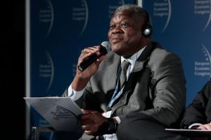 Zdjęcie numer 3 - galeria: EEC 2014: II Forum Współpracy Gospodarczej Afryka-Europa Centralna PANEL III