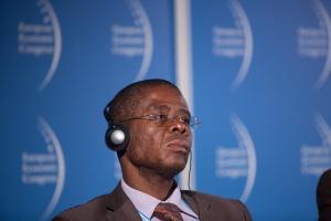 Zdjęcie numer 2 - galeria: EEC 2014: II Forum Współpracy Gospodarczej Afryka-Europa Centralna PANEL I
