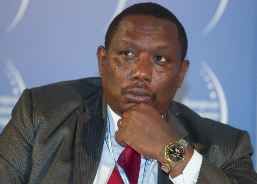 Zdjęcie numer 11 - galeria: EEC 2014: II Forum Współpracy Gospodarczej Afryka-Europa Centralna PANEL II