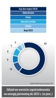 Udział we wzroście zapotrzebowania na energie pierwotna do 2035 r. (w proc.)