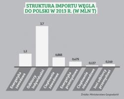 STRUKTURA IMPORTU WĘGLA DO POLSKI W 2013 R. (W MLN T)