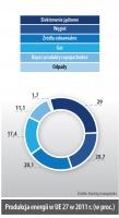 Produkcja energii w UE 27 w 2011 r. (w proc.)