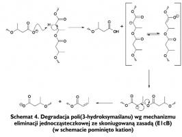 Schemat 4. Degradacja poli(3-hydroksymaślanu) wg mechanizmu eliminacji jednocząsteczkowej ze skoniugowaną zasadą (E1cB) (w schemacie pominięto kation)