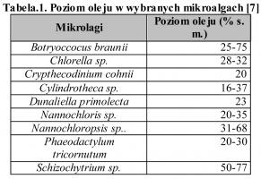 Tabela.1. Poziom oleju w wybranych mikroalgach [7]
