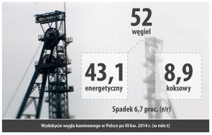 Wydobycie wegla kamiennego w Polsce po III kw. 2014 r. (w mln t)