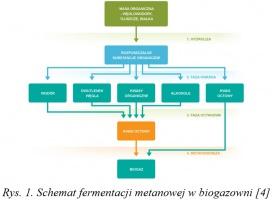 Rys. 1. Schemat fermentacji metanowej w biogazowni [4 ]