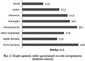 Rys. 2. Ciepło spalania roślin uprawianych na cele energetyczne (badania własne)