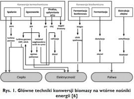 Rys. 1. Główne techniki konwersji biomasy na wtórne nośniki energii [6]