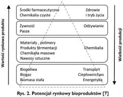 Rys. 2. Potencjał rynkowy bioproduktów [7]