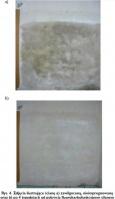 Rys. 4. Zdjęcia ilustrujące ścianę a) zawilgoconą, nieimpregnowaną oraz b) po 4 tygodniach od pokrycia fluorokarbofunkcyjnym silanem