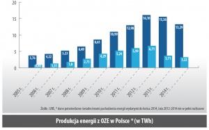 Produkcja energii z OZE w Polsce * (w TWh)