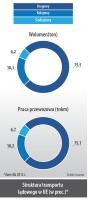 Struktura transportu ladowego w UE (w proc.)*