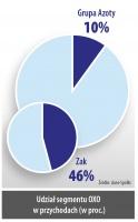 Udział segmentu OXO w przychodach (w proc.)