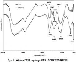 Rys. 1. Widma FTIR czystego CTS i SPIO/CTS BCNC
