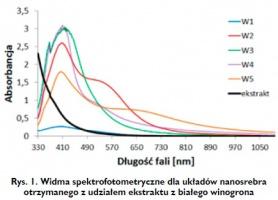Rys. 1. Widma spektrofotometryczne dla układów nanosrebra otrzymanego z udziałem ekstraktu z białego winogrona