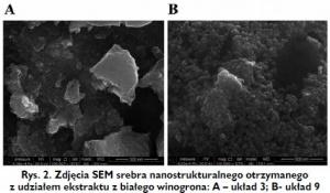 Rys. 2. Zdjęcia SEM srebra nanostrukturalnego otrzymanego z udziałem ekstraktu z białego winogrona: A – układ 3; B- układ 9