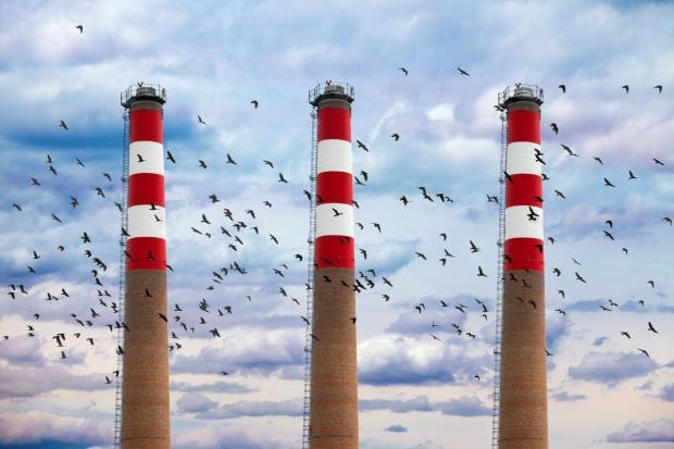 Niekonkurencyjna energetyka może wygonić przemysł z Polski