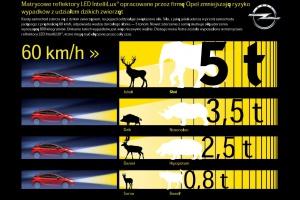 Kiedy samochód zderza się z dzikim zwierzęciem, na pojazd oddziałuje zwiększona siła. Siła, z jaką jeleń uderza w przód samochodu jadącego z prędkością 60 km/h, odpowiada wadze dorosłego słonia - 5 tonom. fot. Opel