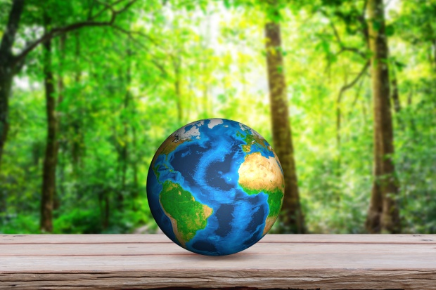 COP21:185 ze 195 krajów złożyło klimatyczne deklaracje