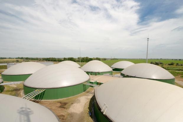Tchórzewski: korekta w ustawie o OZE - nacisk na biogazownie