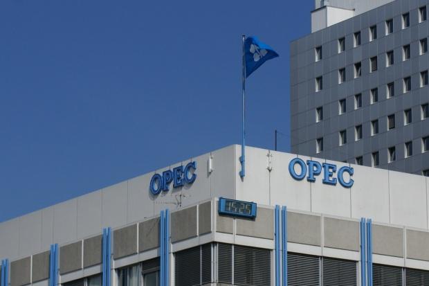 Czy OPEC może grozić rozłam?